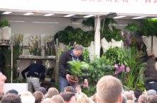Die Blumen-Holländer :-)